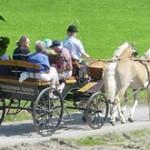 Kutschenfahrt Sommer