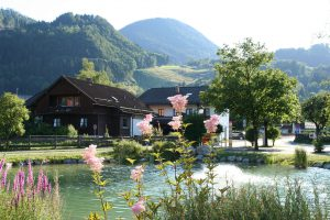 Dorfweiher