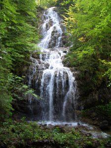 Wildbaren Wasserfall